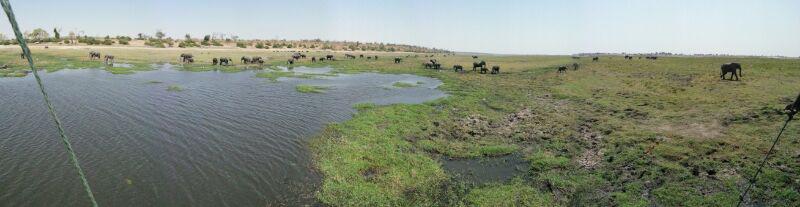 Starry Starry Nights Chobe River Botswana